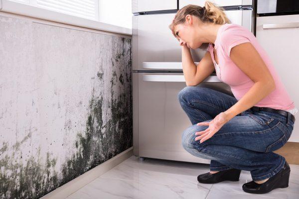 ¿Qué no hacer en caso de tener humedad o filtraciones?