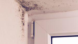 ¿Qué es la humedad por condensación y por qué se genera